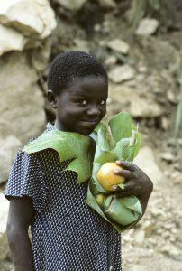 Østafrika 1994-95