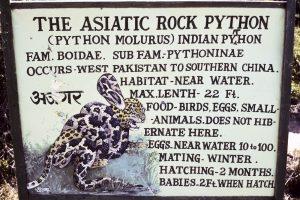 Nordindien 1985-86