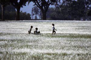 Nepal Boys in grass_resize