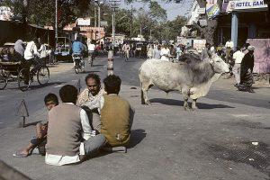 Indien 1994
