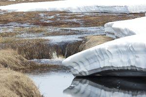 Chukotka 2011