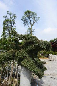 Taiwan 2016
