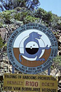 Sydlige Afrika 1993