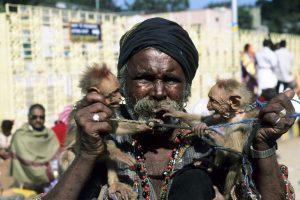 Sydindien 2000-01