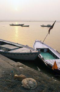 Varanasi 2008